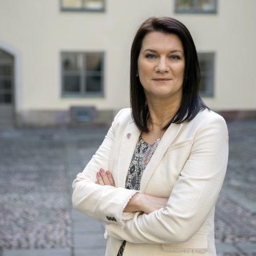 Murarna reser sig - Ann Linde