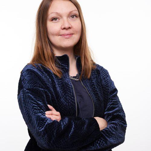 Jakten på den stora reformen - Marika Lindgren Åsbrink