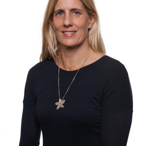 Kaos i kapitalbeskattningen - Åsa-Pia Järliden Bergström