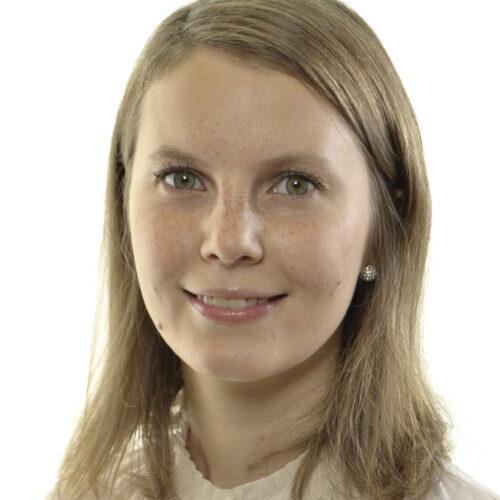 Att flytta makten från demokratin till domstolarna - Ida Karkiainen